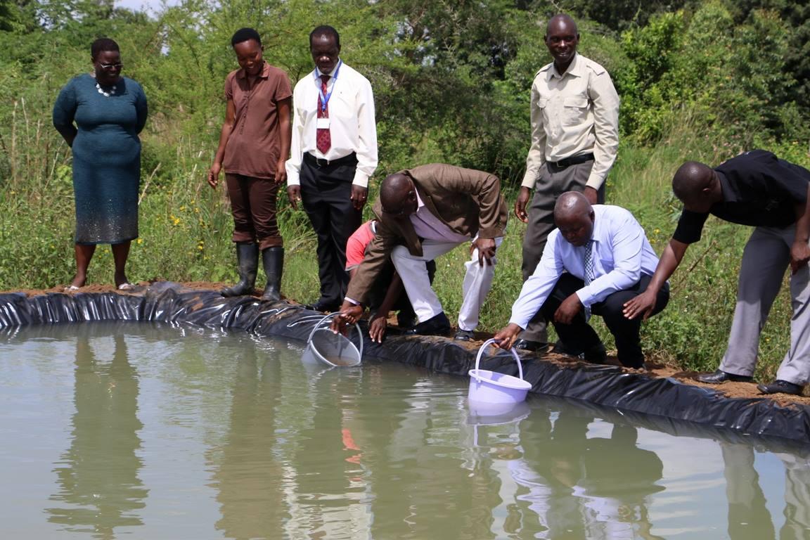 Fishlets Planting